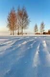 Salida del sol en el invierno. Foto de archivo