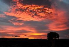 Salida del sol en el Karoo Fotos de archivo libres de regalías