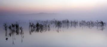Salida del sol en el lago de la niebla de la mañana Fotos de archivo