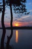 Salida del sol en el lago del bosque con el árbol de pino en el primero plano. Imagen de archivo