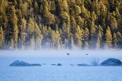Salida del sol en el lago Inari, Finlandia foto de archivo libre de regalías