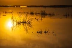 Salida del sol en el mar muerto Foto de archivo