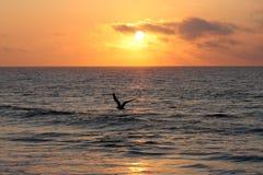 Salida del sol en el océano Imagen de archivo libre de regalías