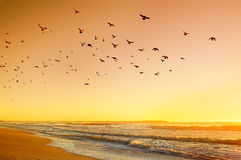 Salida del sol en el Océano Atlántico Foto de archivo