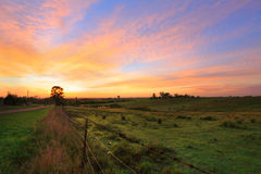 Salida del sol en el país Imagenes de archivo
