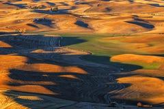 Salida del sol en el Palouse Imagen de archivo libre de regalías