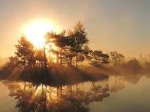 Salida del sol en el pantano, Lituania foto de archivo libre de regalías