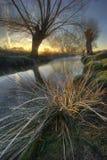 Salida del sol en el park5 Fotografía de archivo libre de regalías