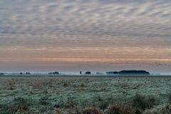 Salida del sol en el parque nacional Drentsche Aa Foto de archivo libre de regalías