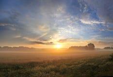 Salida del sol en el prado Foto de archivo libre de regalías