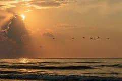 Salida del sol en el puerto Aransas Tejas de la playa Imagenes de archivo