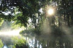 Salida del sol en el río del bosque Imagen de archivo libre de regalías