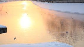 Salida del sol en el río en invierno metrajes