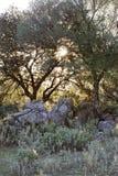 Salida del sol en Grazalema en Sierra de Cádiz fotografía de archivo libre de regalías
