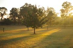 Salida del sol en Hunter Valley Imagenes de archivo