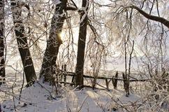 Salida del sol en invernadero viejo abandonado Fotos de archivo libres de regalías