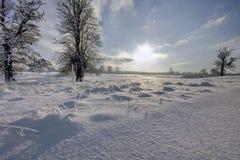 Salida del sol en invierno imagen de archivo
