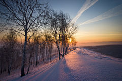 Salida del sol en invierno Foto de archivo
