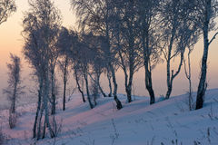 Salida del sol en invierno Fotos de archivo