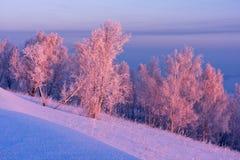 Salida del sol en invierno Fotografía de archivo