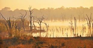 Salida del sol en la cala de la ondulación, Zimbabwe Foto de archivo libre de regalías