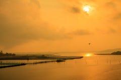 Salida del sol en la charca Fotografía de archivo