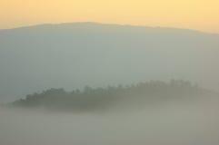 Salida del sol en la forma Chiangma del bosque del árbol de pino de la cubierta de la niebla de la mañana Fotos de archivo