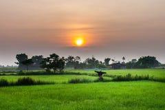 Salida del sol en la granja fotos de archivo libres de regalías