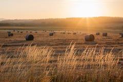 Salida del sol en la granja en Oregon Foto de archivo