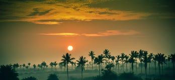 Salida del sol en la India meridional Fotos de archivo libres de regalías