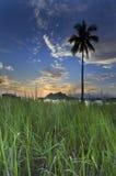 Salida del sol en la isla de Maiga fotografía de archivo libre de regalías