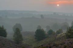 Salida del sol en la niebla Imagenes de archivo