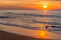Salida del sol en la playa Fotografía de archivo libre de regalías