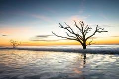 Salida del sol en la playa de la bahía de la botánica imagenes de archivo