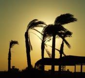 Salida del sol en la playa del Caribe Foto de archivo libre de regalías