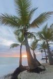 Salida del sol en la playa tropical Fotos de archivo libres de regalías