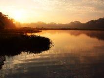 Salida del sol en la selva tropical del Amazonas Fotos de archivo libres de regalías