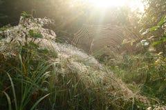 Salida del sol en las montañas de Beskidy Foto de archivo
