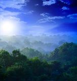Salida del sol en las selvas Fotos de archivo libres de regalías