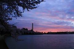Salida del sol en lavabo de marea en Washington DC Fotografía de archivo