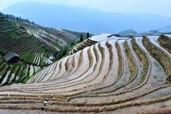 Salida del sol en los campos del arroz en China Fotos de archivo libres de regalías