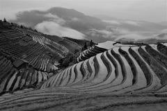 Salida del sol en los campos del arroz en China Fotos de archivo