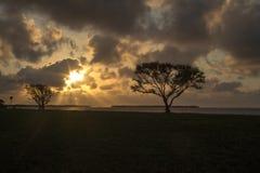 Salida del sol en los marismas Imagen de archivo