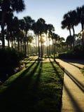 Salida del sol en Orlando imagen de archivo libre de regalías
