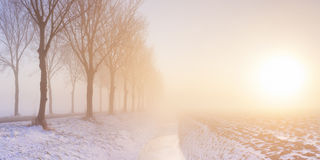 Salida del sol en paisaje típico del pólder en los Países Bajos Fotografía de archivo