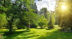 Salida del sol en parque hermoso Imágenes de archivo libres de regalías