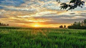 Salida del sol en poco cielo Fotos de archivo libres de regalías