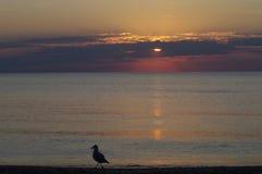 Salida del sol en Racine, WI-4 Imagen de archivo libre de regalías