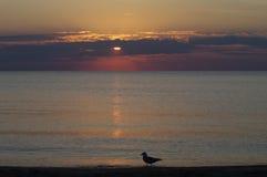 Salida del sol en Racine, WI-6 Imágenes de archivo libres de regalías