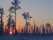 Salida del sol en Siberia Foto de archivo libre de regalías
